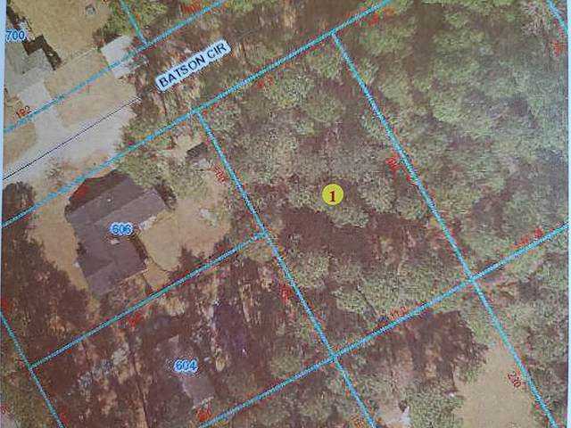 00 Batson Circle, Goldsboro, NC 27530 (#75670) :: The Beth Hines Team