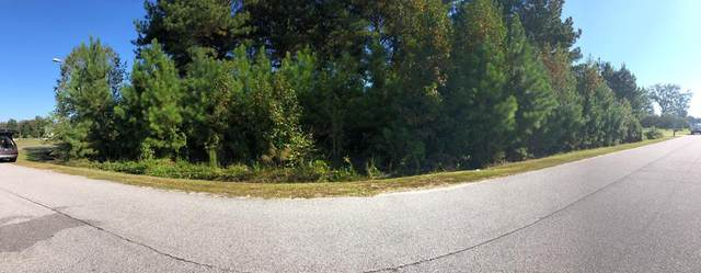 119 Cliffwell Drive, Goldsboro, NC 27530 (#75847) :: The Beth Hines Team
