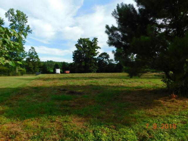 110 Kelly Drive, Goldsboro, NC 27530 (#71332) :: The Beth Hines Team