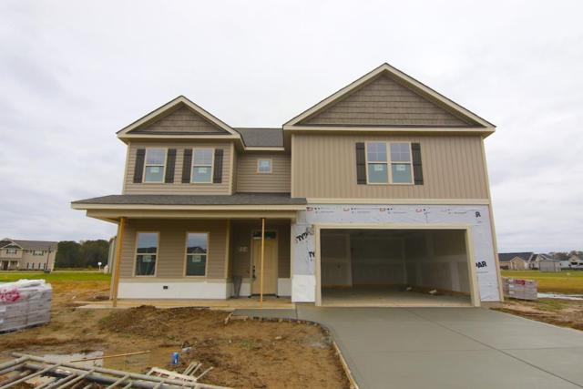 114 Castaway Court, Pikeville, NC 27863 (#71836) :: The Beth Hines Team