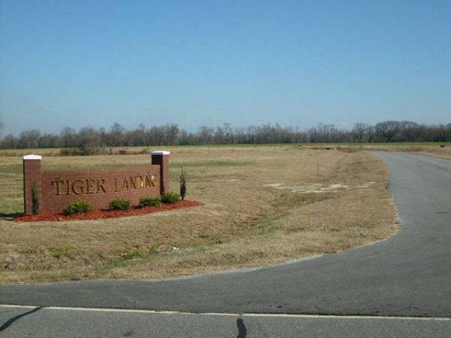 104 Pinehurst Drive, Mt Olive, NC 28365 (#62816) :: The Beth Hines Team