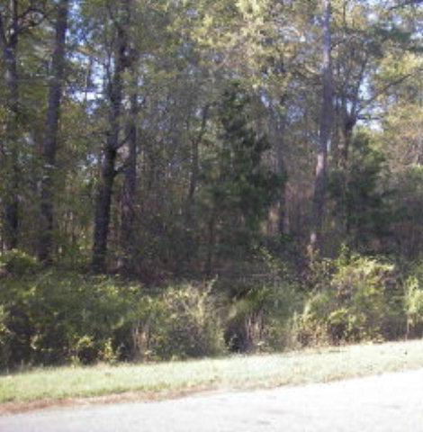 139 Meadow Lark Road, Goldsboro, NC 27534 (#62916) :: The Beth Hines Team