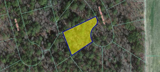 306 Phillips Ridge Lane, Goldsboro, NC 27530 (#67115) :: The Beth Hines Team
