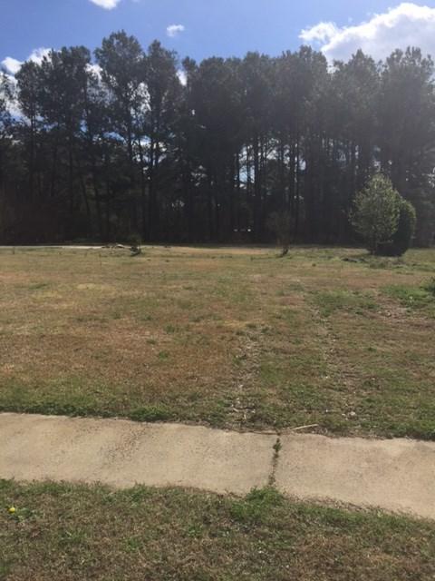 623 E Raintree Lane, Goldsboro, NC 27534 (#68357) :: The Beth Hines Team