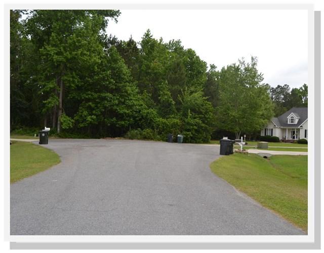 106 Birch Circle, Goldsboro, NC 27534 (#69051) :: The Beth Hines Team