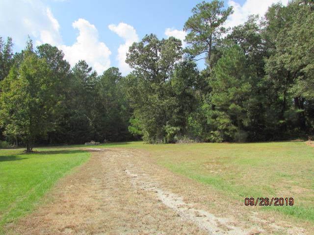 117 Mansion Ln, Goldsboro, NC 27534 (#73761) :: The Beth Hines Team