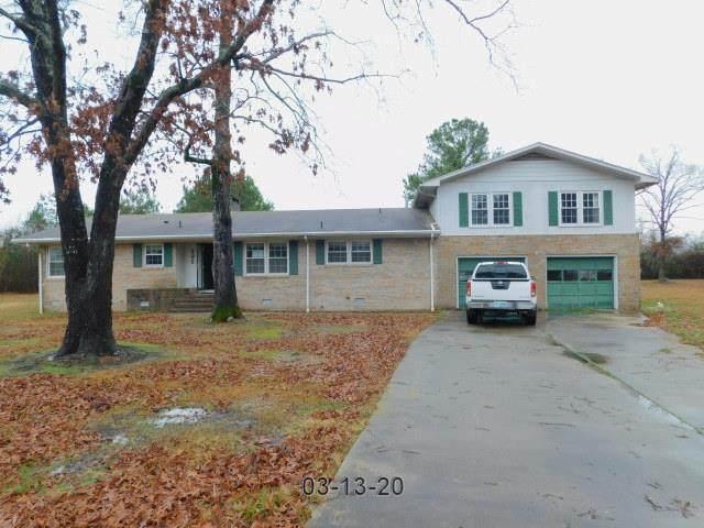 205 Camellia Drive, Goldsboro, NC 27530 (#74832) :: The Beth Hines Team