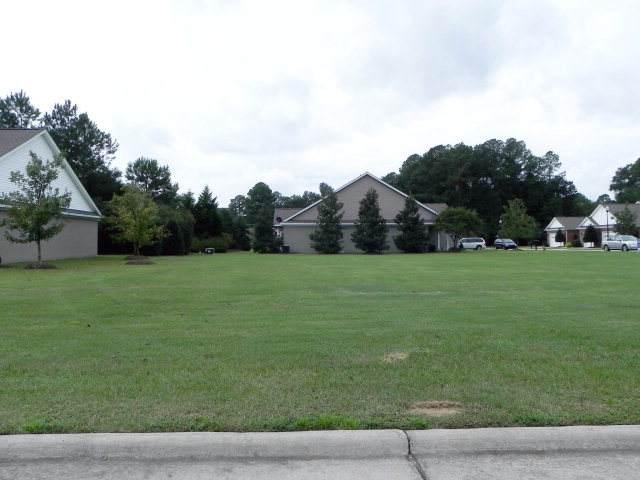 117 + 3 Chafin Pl, Goldsboro, NC 27534 (#77273) :: Rachel Kendall Team