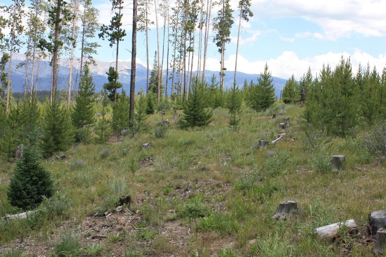 156 Elk Meadows Lane Gcr 5194B - Photo 1