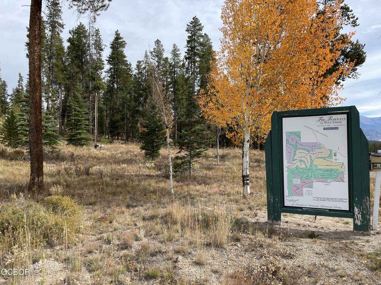 479 Gcr 51/Pole Creek Drive - Photo 1