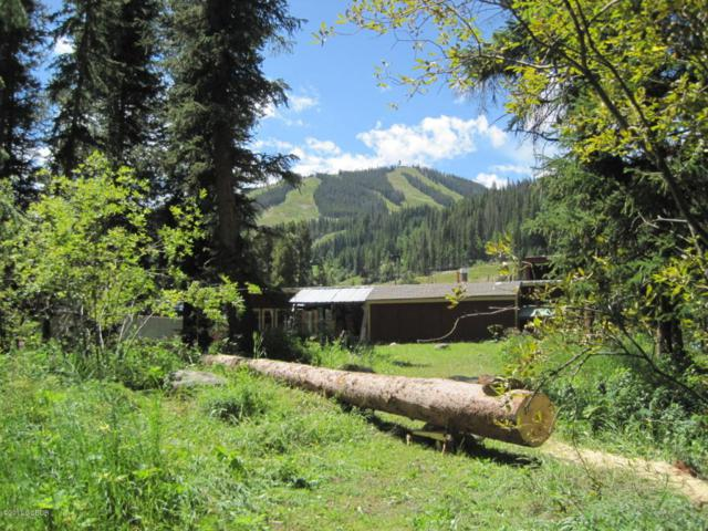 Winter Park Drive, Winter Park, CO 80482 (MLS #11-1468) :: The Real Estate Company
