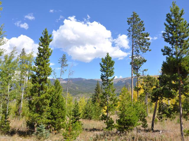 394 Jack Frost Dr Aka Gcr 808, Fraser, CO 80442 (MLS #18-1332) :: The Real Estate Company