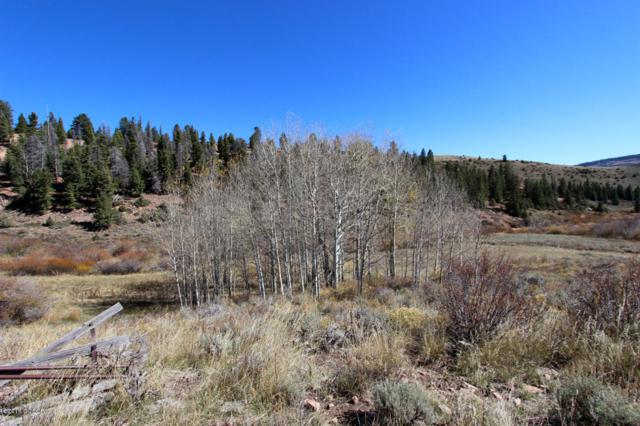 2616 County Rd 162, Kremmling, CO 80459 (MLS #18-1613) :: The Real Estate Company