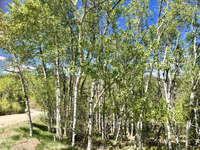 1743 Clairs Run, Parshall, CO 80468 (MLS #18-606) :: The Real Estate Company