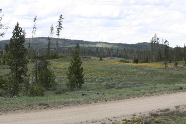 1160 E. Elk Meadows Dr.Gcr 5194, Tabernash, CO 80478 (MLS #18-746) :: The Real Estate Company