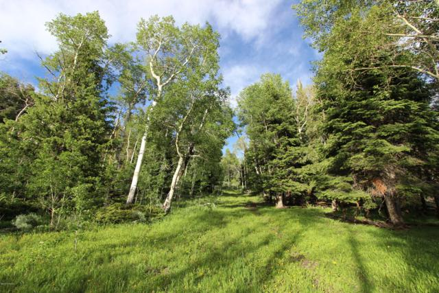 Routt County Road 2, McCoy, CO 80463 (MLS #19-1152) :: The Real Estate Company