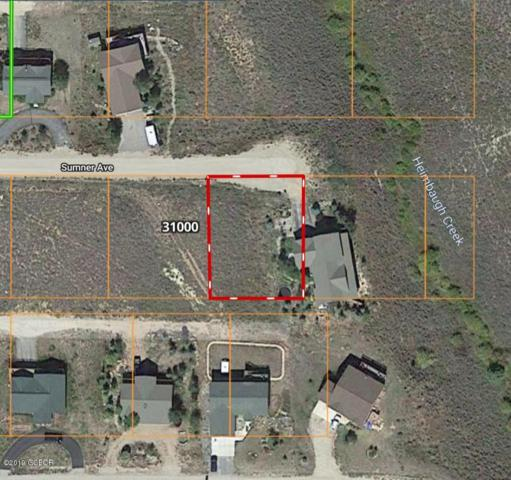 TBD E Sumner Ave, Hot Sulphur Springs, CO 80451 (MLS #19-1190) :: The Real Estate Company