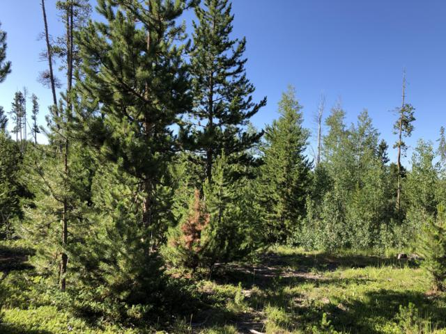398 Gcr 4980, Grand Lake, CO 80447 (MLS #19-1192) :: The Real Estate Company