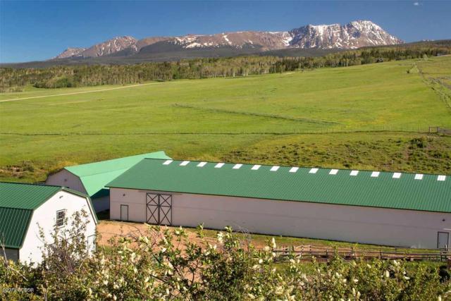 0737 Latigo Trail, Silverthorne, CO 80498 (MLS #19-1244) :: The Real Estate Company