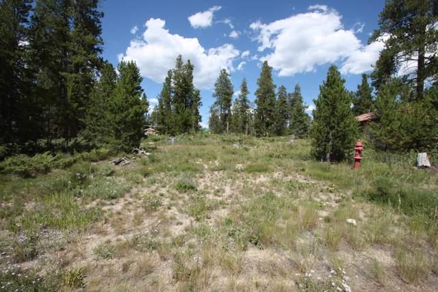 239 Gcr 649, Grand Lake, CO 80447 (MLS #19-1300) :: The Real Estate Company