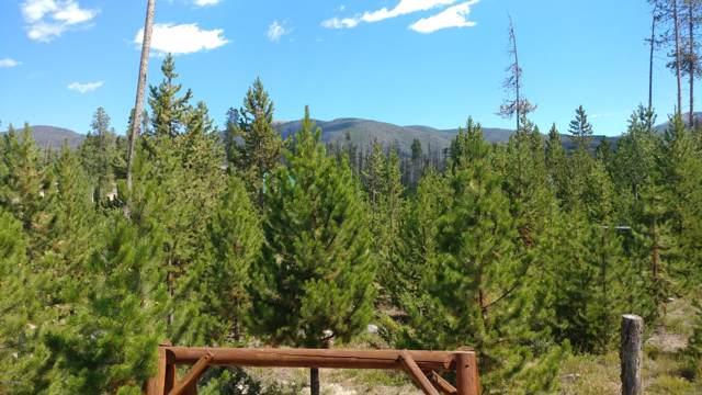 182 Gcr 4943, Grand Lake, CO 80447 (MLS #19-1349) :: The Real Estate Company