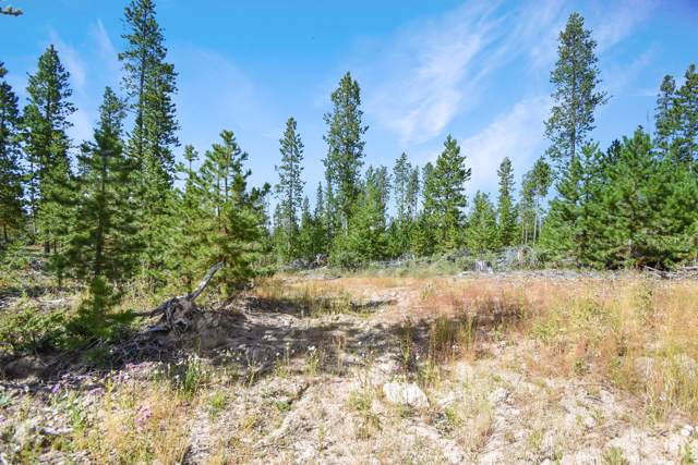 62 Gcr 4459, Grand Lake, CO 80447 (MLS #19-1381) :: The Real Estate Company
