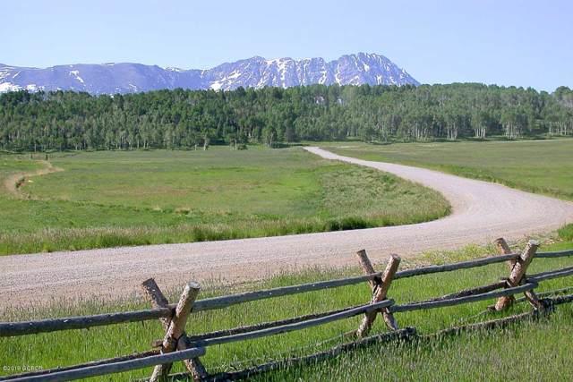 0375 Latigo Trail, Silverthorne, CO 80498 (MLS #19-1386) :: The Real Estate Company