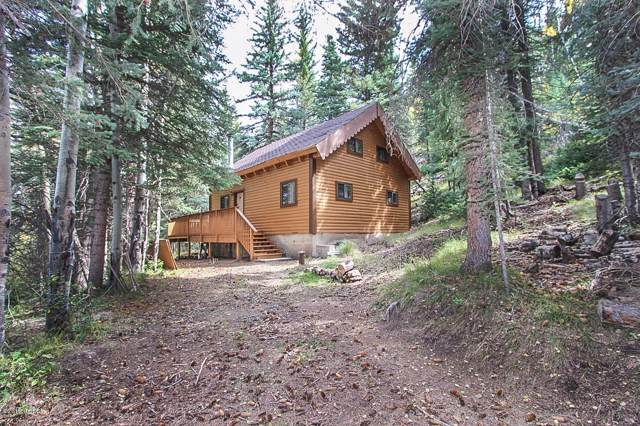 994 Clairs Run, Parshall, CO 80468 (MLS #19-1468) :: The Real Estate Company