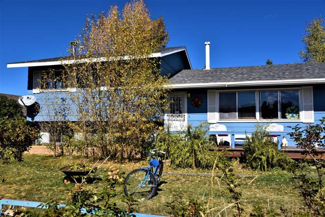 245 W Topaz Avenue, Granby, CO 80446 (MLS #19-1559) :: The Real Estate Company