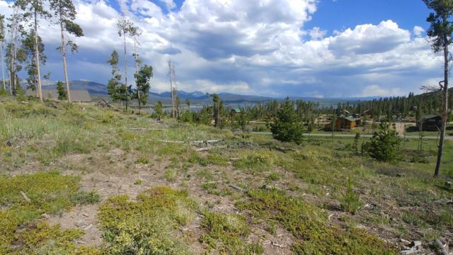 157 Gcr 4033, Grand Lake, CO 80447 (MLS #19-3) :: The Real Estate Company