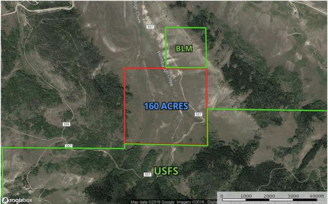 N/A, Hot Sulphur Springs, CO 80451 (MLS #19-429) :: The Real Estate Company