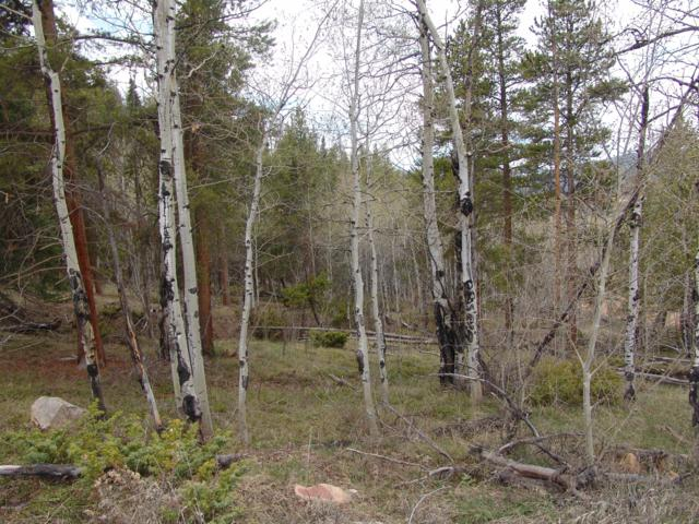 574 Gcr 899 Overlook Drive, Granby, CO 80446 (MLS #19-595) :: The Real Estate Company