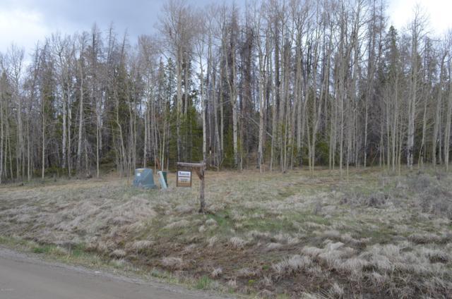 2064 Gcr 88, Granby, CO 80446 (MLS #19-654) :: The Real Estate Company