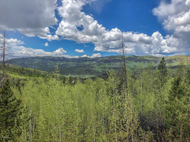 83 & 125 County Rd 414, Granby, CO 80446 (MLS #19-782) :: The Real Estate Company