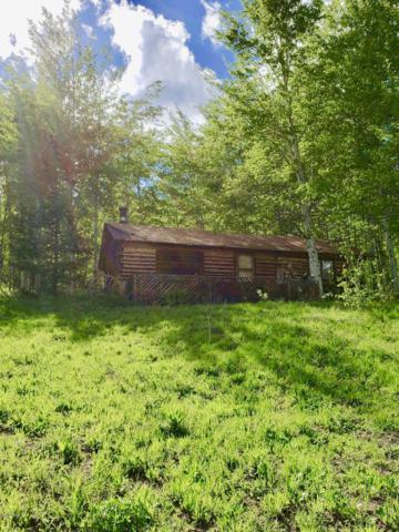 1583 Gcr 162, Kremmling, CO 80459 (MLS #19-800) :: The Real Estate Company