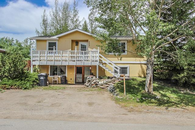 553 Polar Court, Silverthorne, CO 80498 (MLS #19-885) :: The Real Estate Company