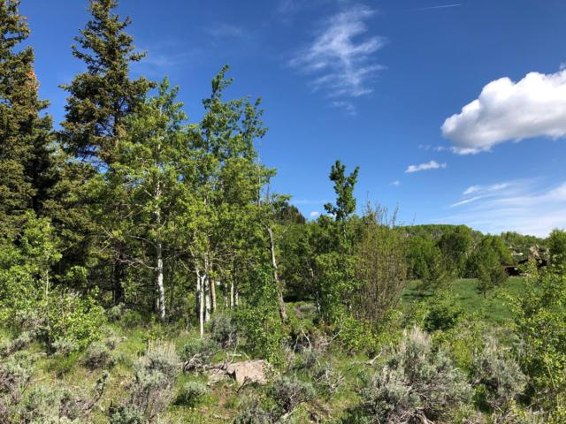 1572 County Rd 162, Kremmling, CO 80459 (MLS #19-902) :: The Real Estate Company
