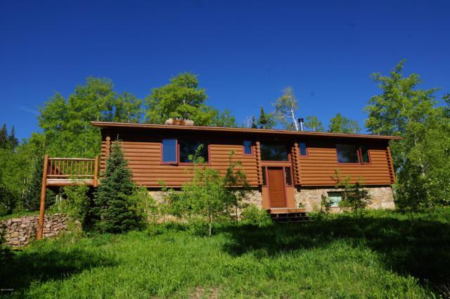 51 Gcr 1641, Kremmling, CO 80459 (MLS #19-943) :: The Real Estate Company