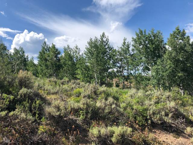 TBD Gcr 165, Kremmling, CO 80459 (MLS #20-1114) :: The Real Estate Company
