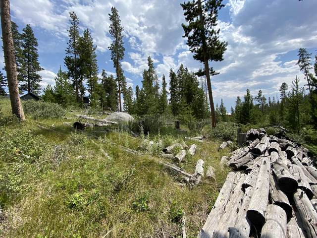 90 Gcr 4693, Grand Lake, CO 80447 (MLS #20-1130) :: The Real Estate Company
