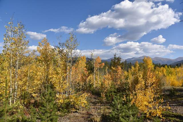 260 Kings Crossing Rd #C1, Winter Park, CO 80482 (MLS #20-1424) :: The Real Estate Company
