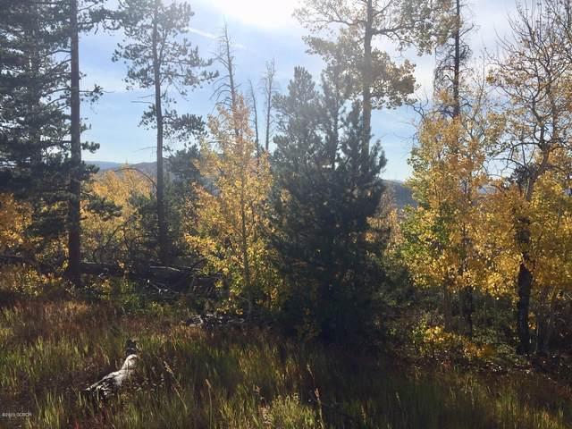 1050 Mt Neva Drive, Granby, CO 80446 (MLS #20-1445) :: The Real Estate Company