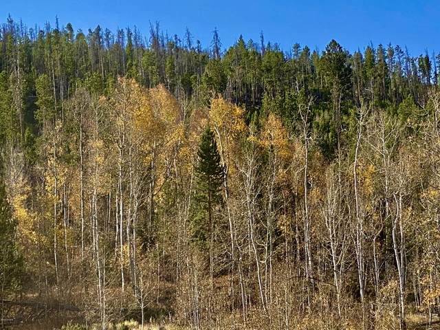 Lot 31-33 Gcr 559, Hot Sulphur Springs, CO 80451 (MLS #20-1504) :: The Real Estate Company