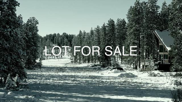 689 Little Pierre Avenue, Fraser, CO 80442 (MLS #20-1566) :: The Real Estate Company