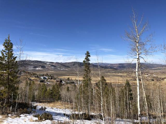 455 Gcr 899, Granby, CO 80446 (MLS #20-1677) :: The Real Estate Company