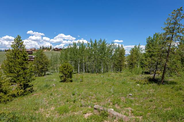135 County Rd 8980 Drive, Granby, CO 80446 (MLS #20-309) :: The Real Estate Company