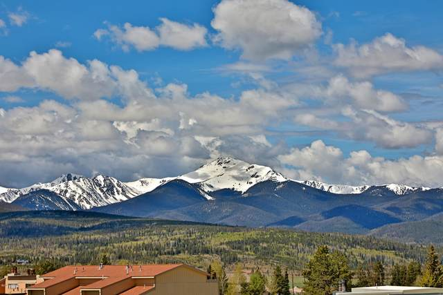 460 Gcr 832 32-4, Fraser, CO 80442 (MLS #20-597) :: The Real Estate Company