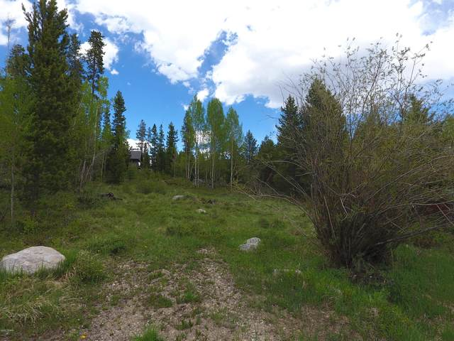 1168 Gcr 494, Grand Lake, CO 80447 (MLS #20-639) :: The Real Estate Company