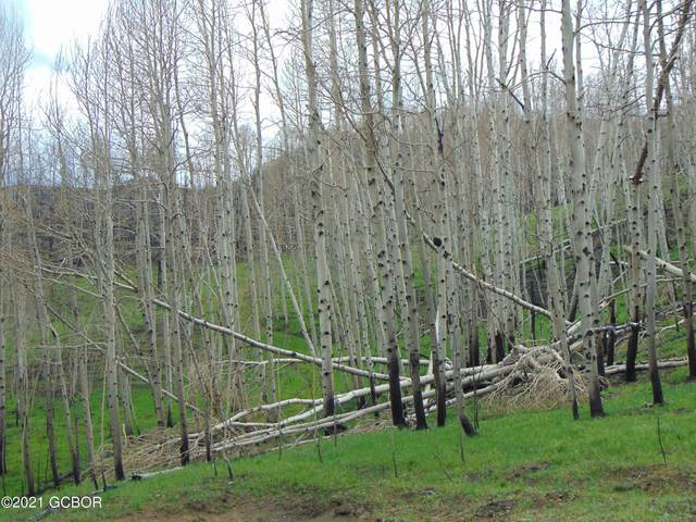 811 County Rd 408W, Granby, CO 80446 (MLS #21-810) :: The Real Estate Company