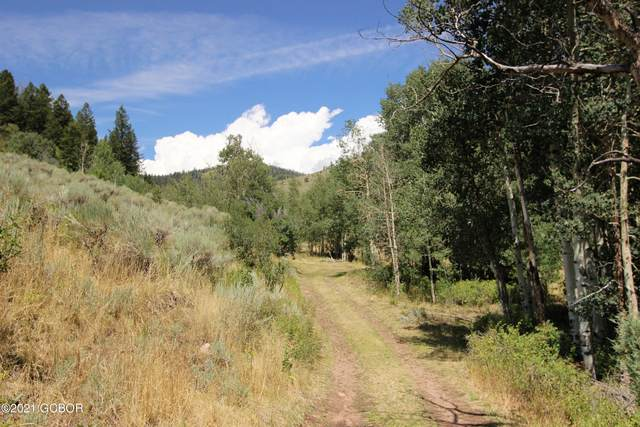 Tbd County Rd 111, Kremmling, CO 80459 (MLS #21-825) :: The Real Estate Company